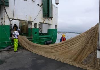 fischereihafen-neues-netz