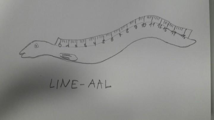 lineaal-barbara