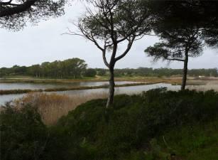 vilamoura-lagune