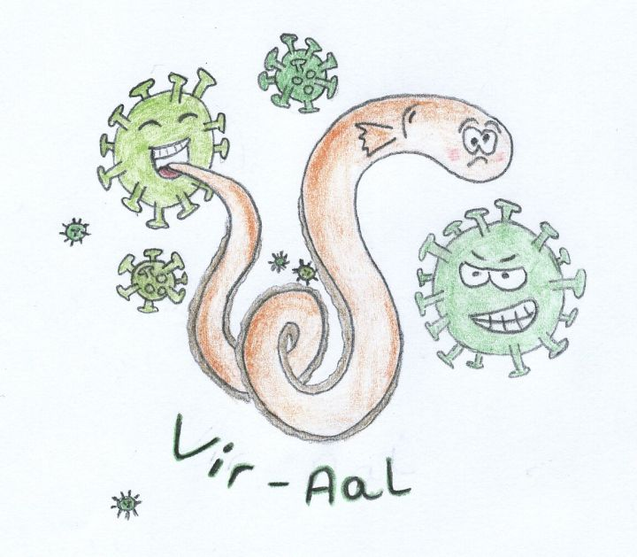 VirAal Isabel