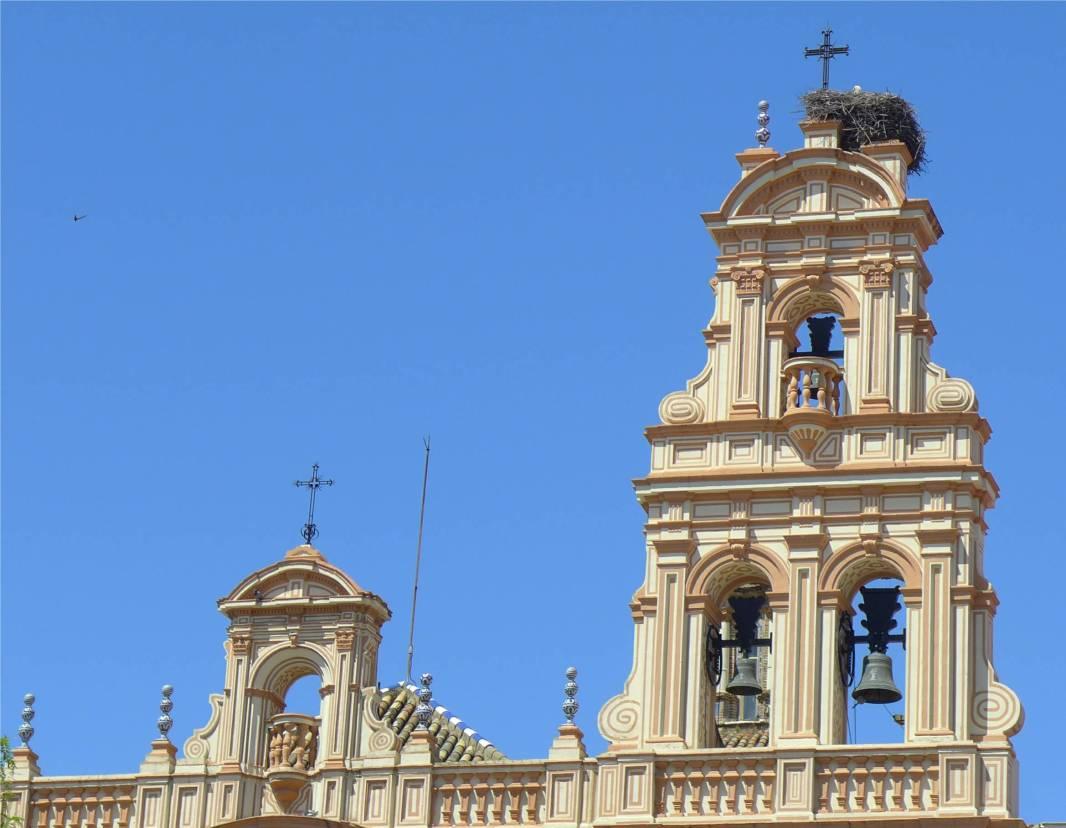 Huelva Storchennachwuchs mit Gottes Segen