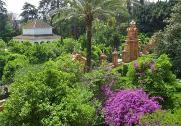 Sevilla Alcazar 5