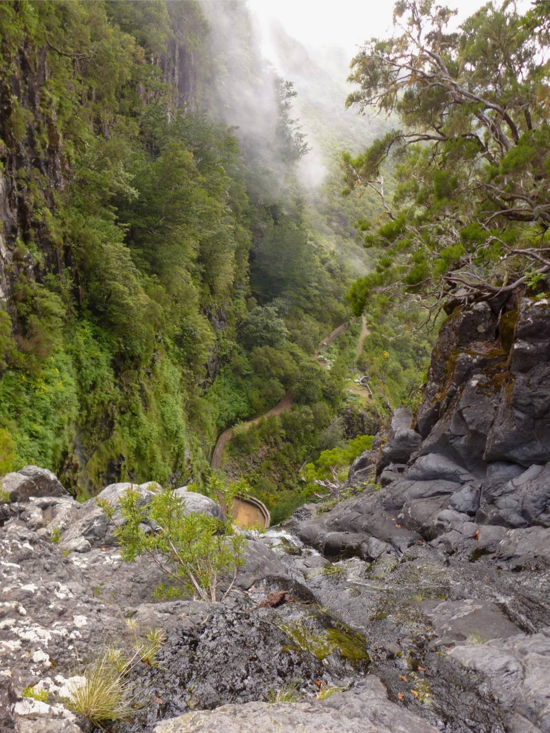 Madeira 2 Aussicht beim baden