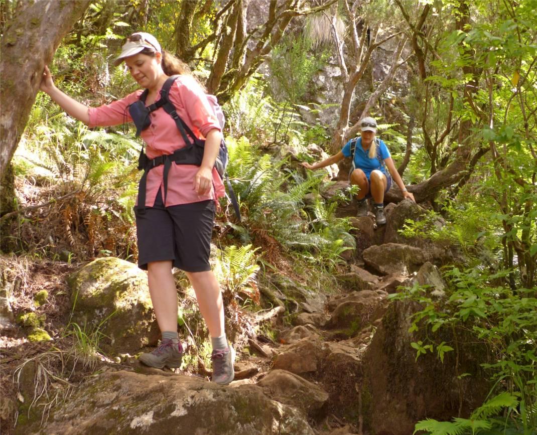 Madeira 2 es wird steil