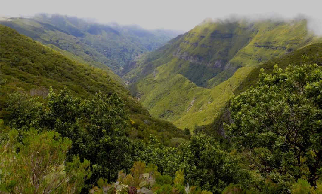 Madeira 2 gruene Berge