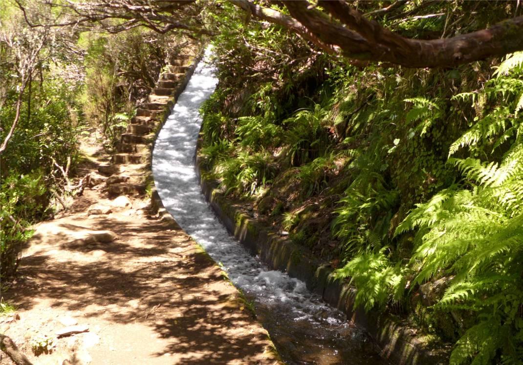 Madeira 2 Levada mit Treppe