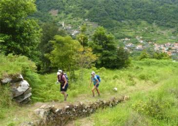 Madeira 3 Aufstieg zur Levada