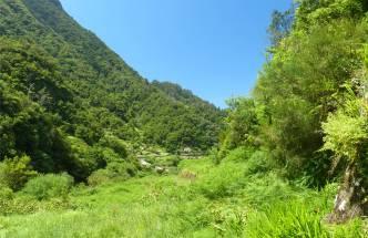 Madeira 3 gruene Ausblicke