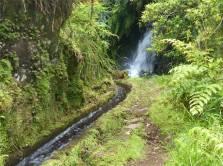 Madeira 3 schnell fliessende Levada