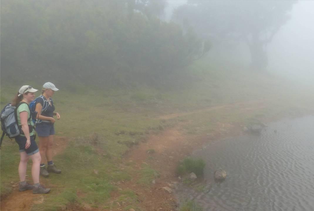 Madeira 4 am See