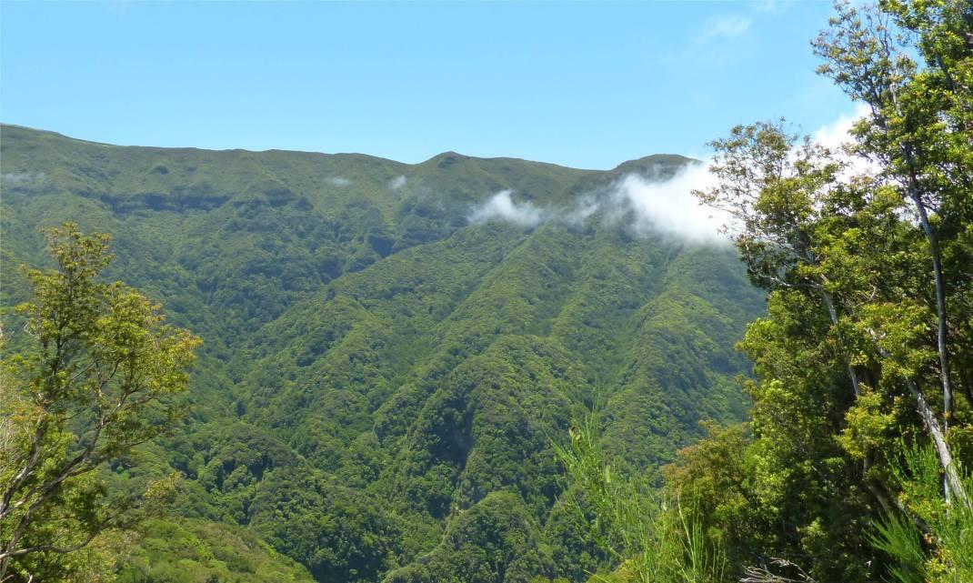 Madeira 4 Berge und Wolken