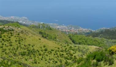 Madeira 5 Blick auf Funchal