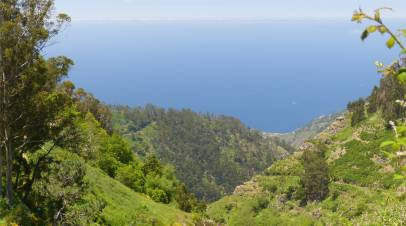 Madeira 5 Blick aufs Meer