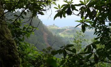 Madeira LdR Ausblick
