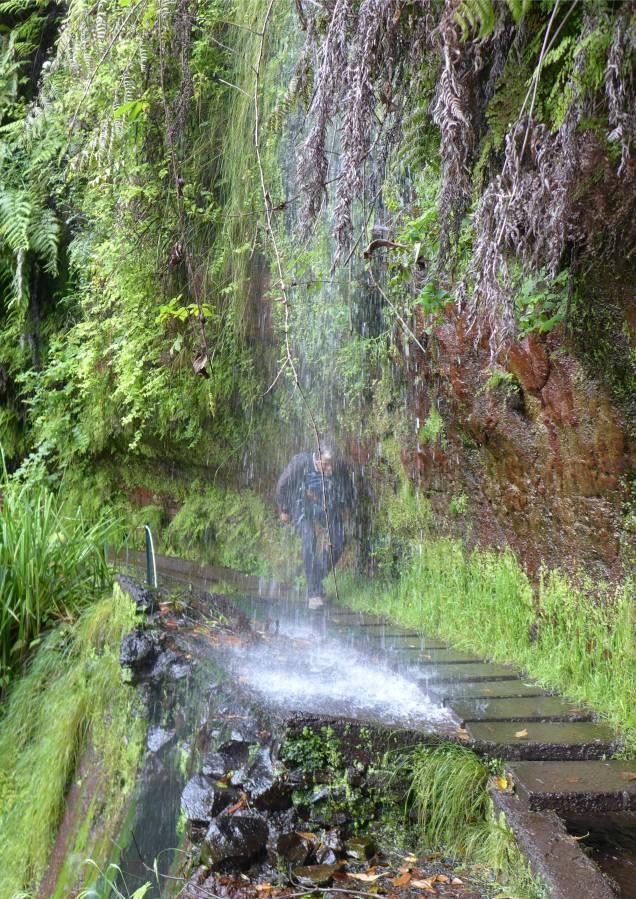 Madeira LdR Nobbi unterm Wasserfall