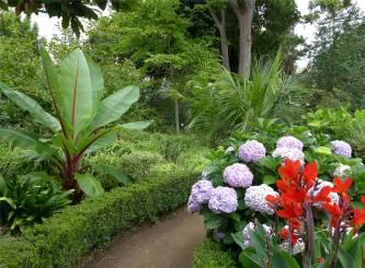Teneriffa Orotava botanischer Garten