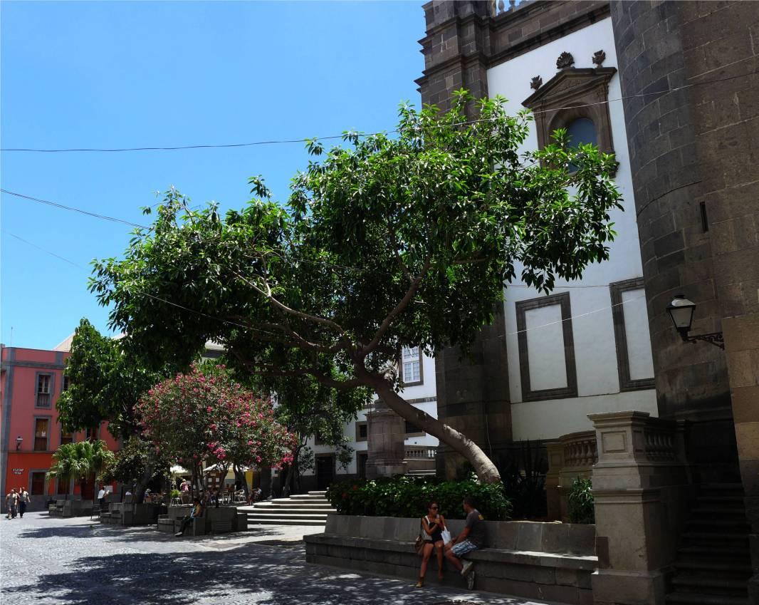 Gran Canaria Las Palmas an der Kathedrale