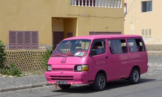 CV Sal pinker Bus