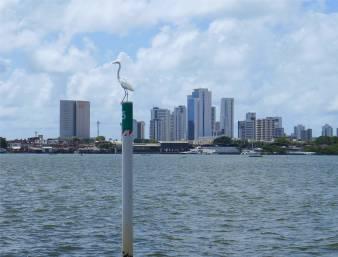 Recife Empfangskomitee
