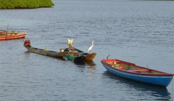 Maragogipe Boote mit Reiher