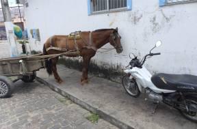 Maragogipe Pferde und Motorraeder parken auf dem Fussweg