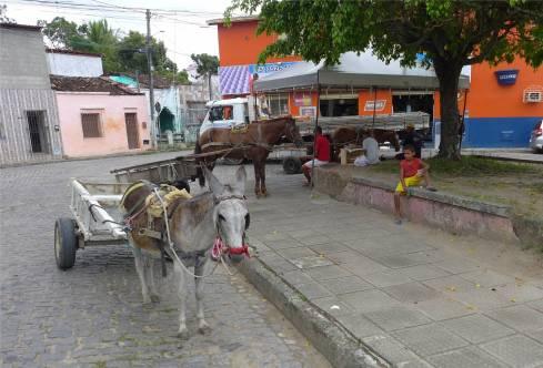 Maragogipe Pferdeparkplatz