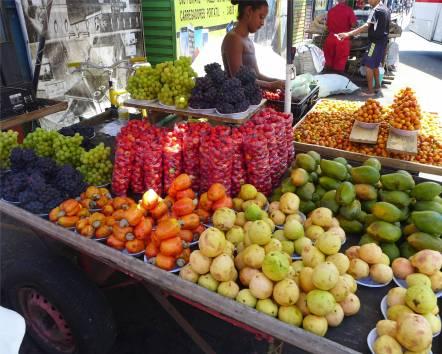 Recife Vitamine