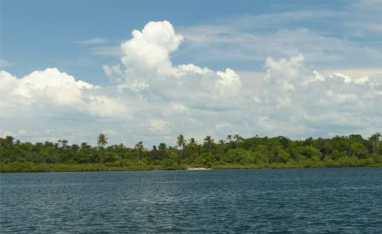 Rio Paraguacu grünes Ufer