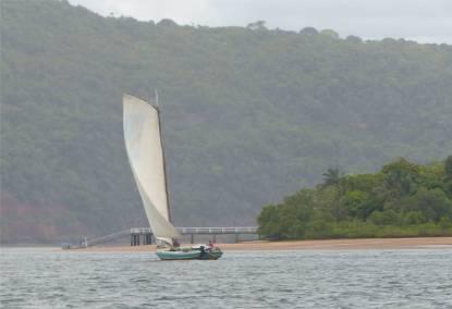 Rio Paraguacu Saviero 2