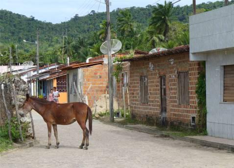 Sao Francisco einfache Häuser an der Dorfstrasse