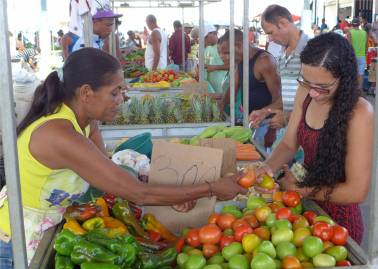 Maragogipe Gemüse in allen Farben