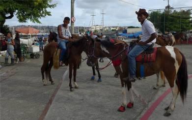 Ribeira Pause auf dem Pferderücken