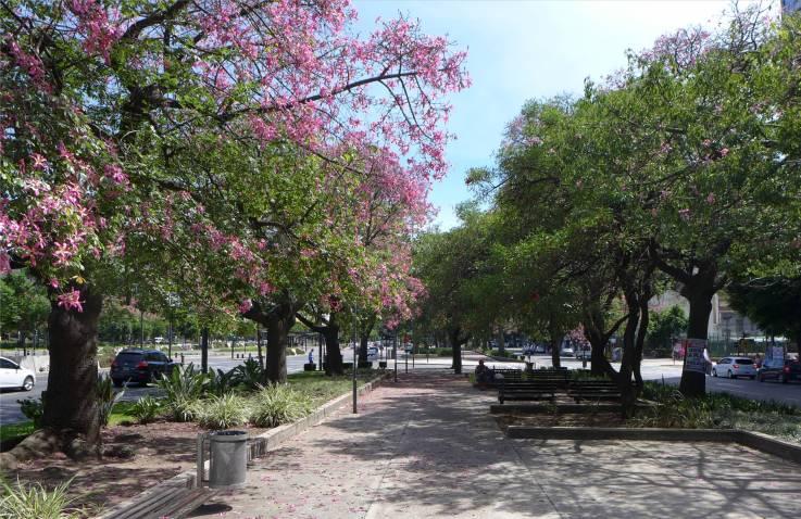 BA als Parks getarnte Verkehrsinseln
