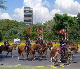 BA Pferde im Einsatz