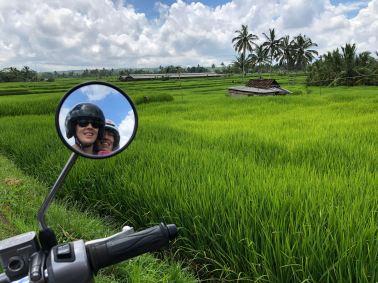 Bali auf dem Roller durch die Reisfelder