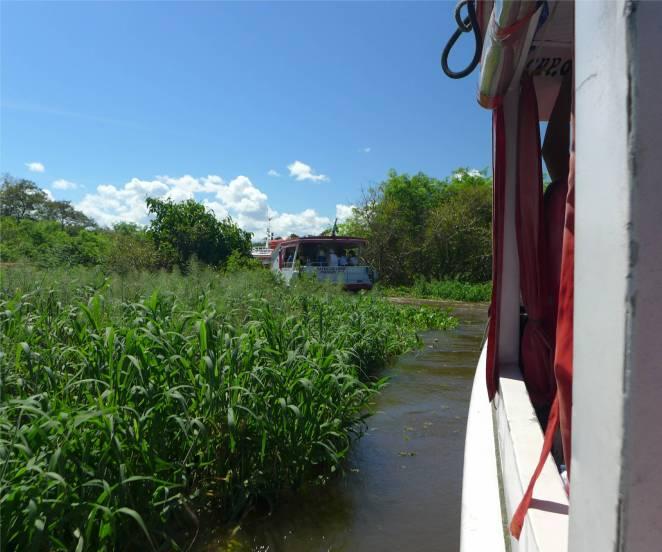 Manaus Ausflugsschiffe bleiben im schwimmenden Gras stecken