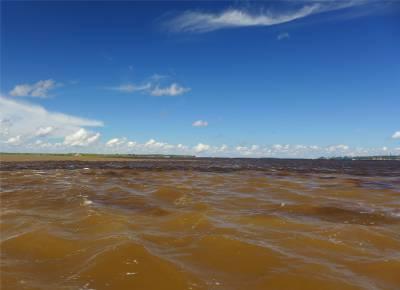 Manaus Encontro das Aguas 1