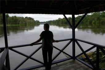 Uacari Blick auf den Fluss