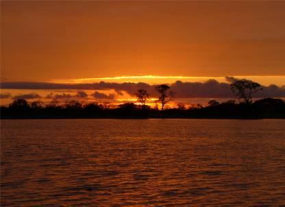 Uacari Sonnenuntergang am Mamiraua See