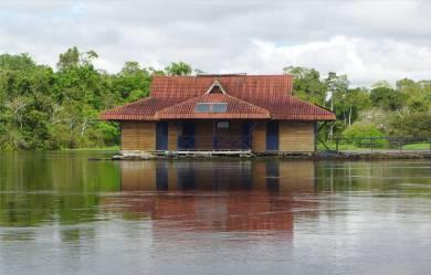 Uacari wir wohnen auf der linken Seite dieses Doppelhauses