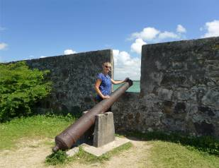 Cabedelo Fort mit Kanonen