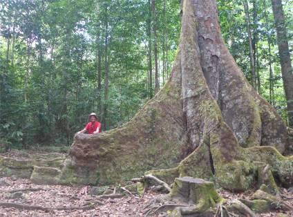 FG Affenberg das kleine rote ist Nobbi