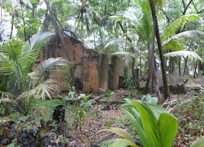 FG Ile Joseph Ruinen werden überwuchert