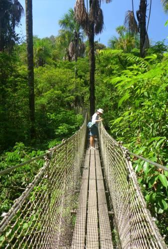 FG Zoo auf der Hängebrücke