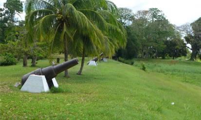 Suriname Nieuw Amsterdam Kanonen unter Palmen