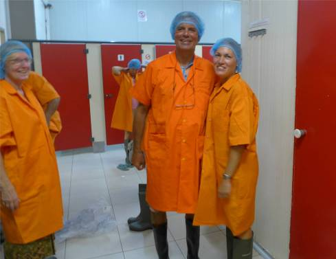 Suriname zu Besuch in der Fischfabrik