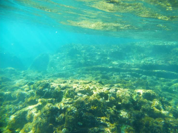 Grenada schnorcheln in flachem Wasser