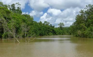 Suriname Einfahrt in den Perica
