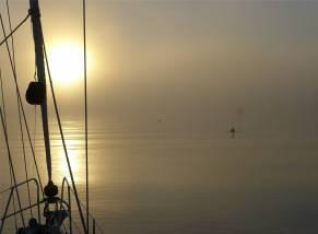 Suriname Morgennebel