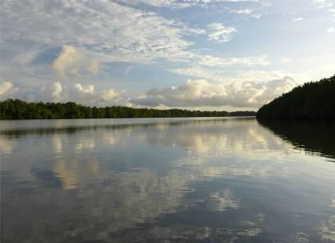 Suriname Morgenstimmung auf dem Commewijne